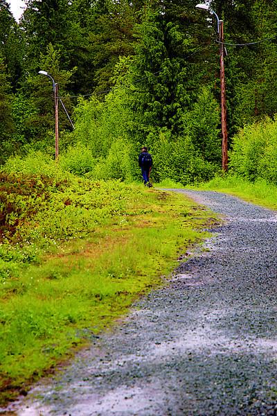 På tur med Ståle og Dachsene i Bymarka, Trondheim (Foto: Geir)