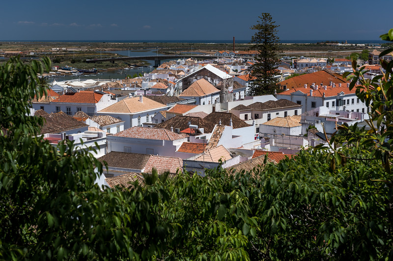 Faro 83.jpg