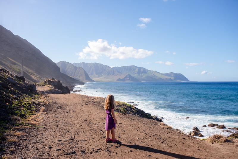 Hawaii2019-795.jpg