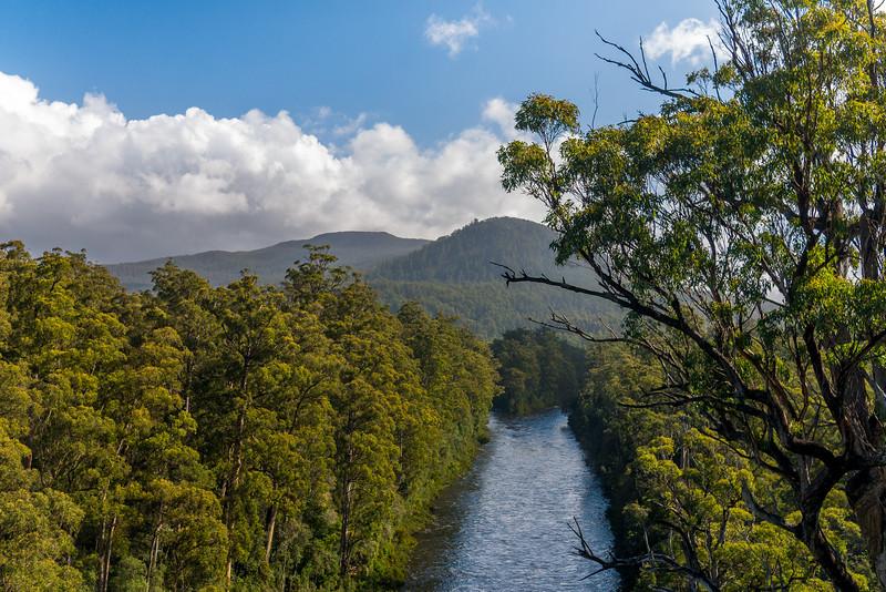 Tasmania-45.jpg