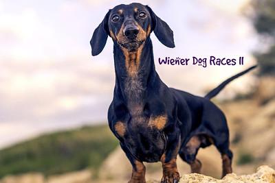 Ice Bears (5) v Peoria (2) 2-8-20 Wiener Dog Races II
