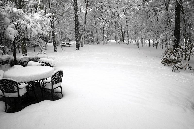 snow_o1_2018_201.jpg