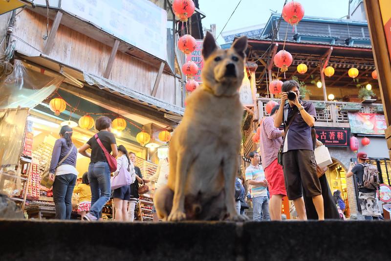 Taiwan-0180.jpg