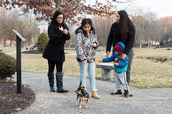 12/26/18 Wesley Bunnell | Staff Fabian Moatesino, age 9, walks her dog Lumina down Memorial Boulevard as her mother Sugeiry Morel, L, walks along with Karina Peres and her 4 year old son Robert Morel.