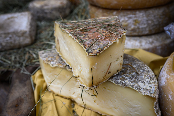 Affinatori a Cheese 2019