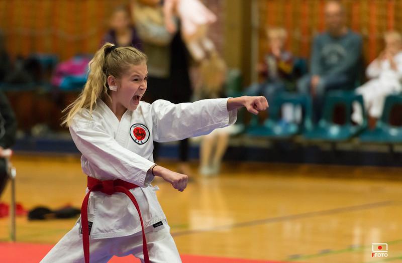 Taastrup karate klubmesterskab 2014 -DSC_3524.jpg