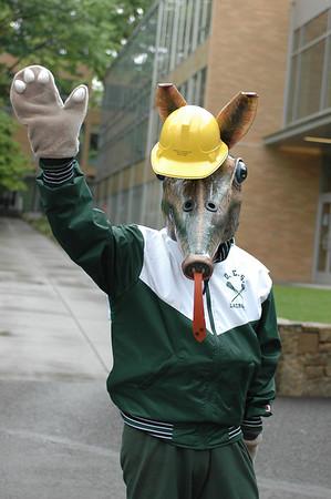 aardvark mascot