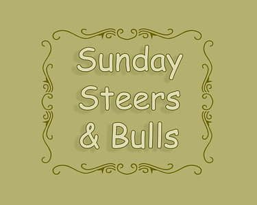 Steer and Bull Riding Sunday