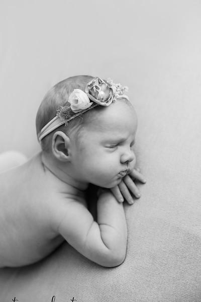 Autumn-Newborn-Low-Resolution370A0129-Edit-2.jpg