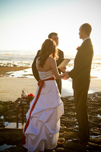 Tracy and Ian's Wedding-354.jpg