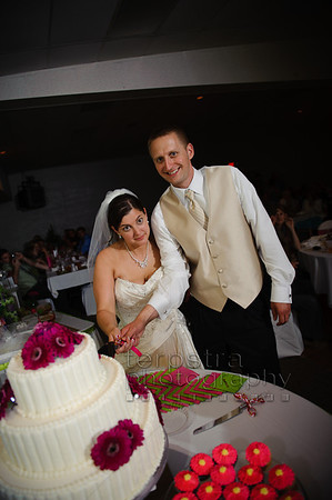 07 Cake Cutting
