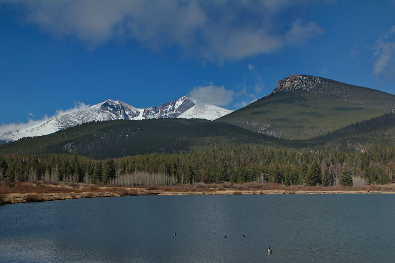Long's Peak, from Lily Lake