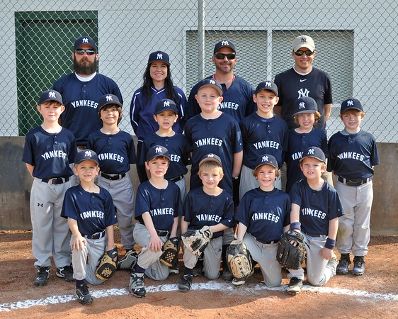 2014 Yankees JCALL