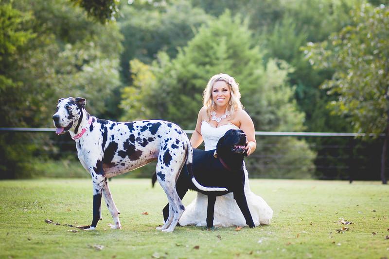 2014 09 14 Waddle Wedding - Bride and Groom-900.jpg