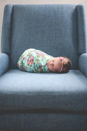 Iris Newborn