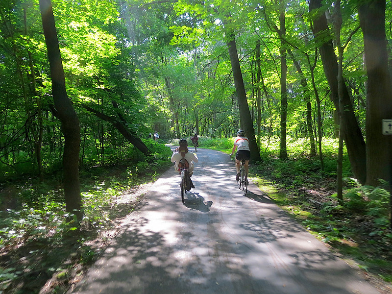 This was a beautiful section through the woods in the shade on the bicycle path. I had my camera in my pocket and was able to pull it out and take a snapshot while we were riding on the trail.