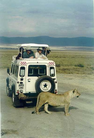 Africa Vacation 2000