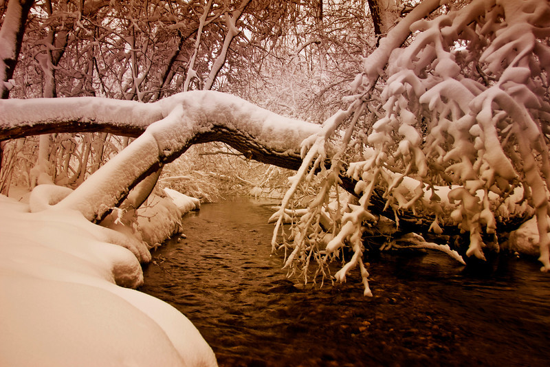 winter  river 2  copy.jpg