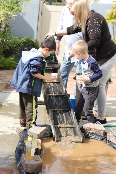 Kindergarten - Gold Rush