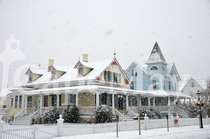 Jan8-2011.jpg