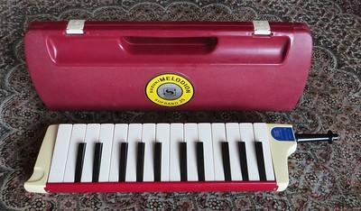 Suzuki Soprano 25 - 1970s - tuning