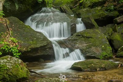 Allegehney National Forest - 2015