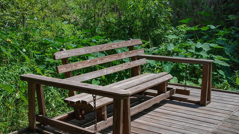 Glider bench on boardwalk