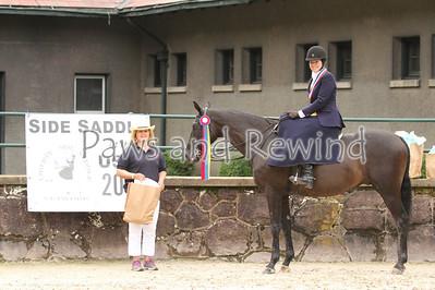 Ladies Hunter Side Saddle Champion and Reserve Champion