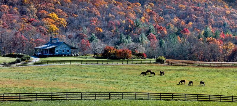 Farm in Suches, Ga.