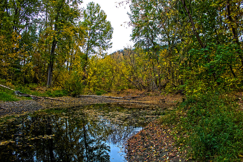 Steelhead_Pond_HDR.jpg