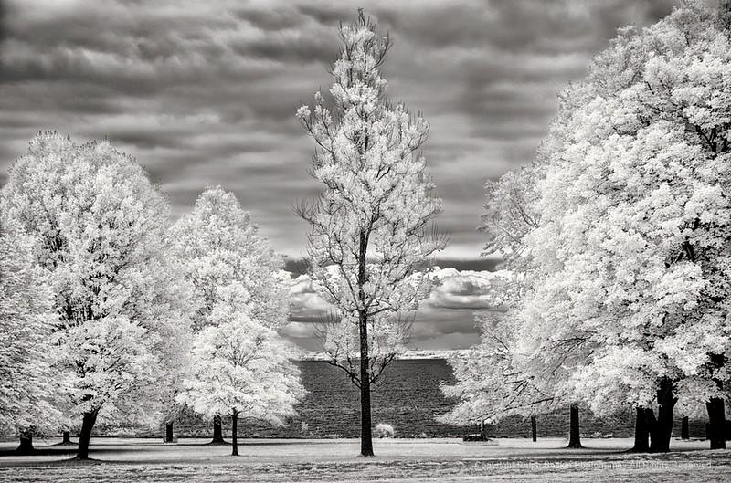 Sherwood Island State Park, Westport CT Infrared