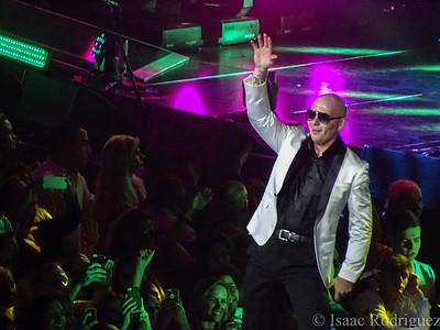 Pitbull 2014