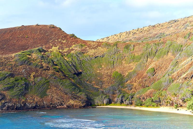 Hawaii-IMG_2962_.jpg