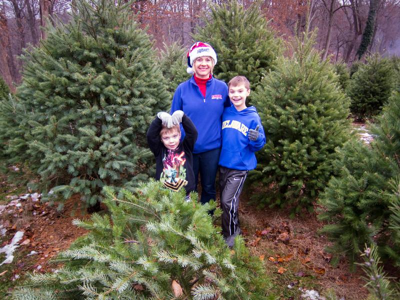 20141130_schmidts_christmas_tree_farm_2191.jpg