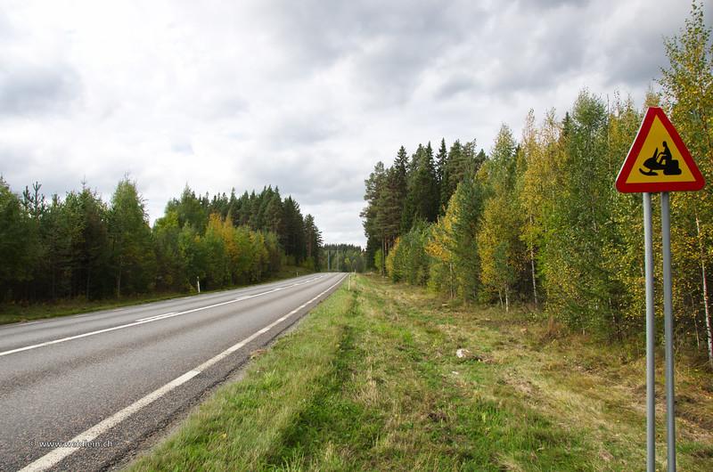 2013_Sweden_21.jpg