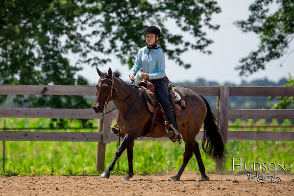 52 Working Western Horse or Pony