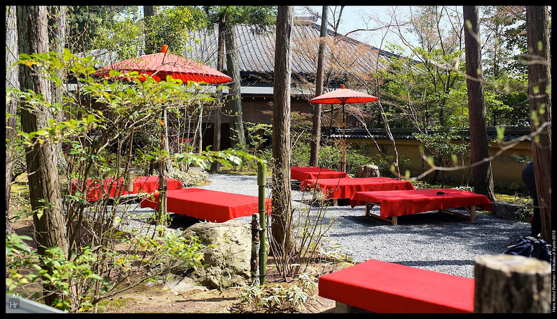 Fancy some tea?  Kinkaku-Ji, The Golden Pavilion 5th April 2013 Kyoto, Japan