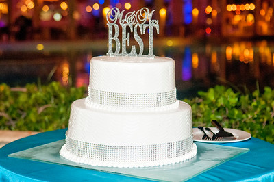 The Best Wedding Punta Cana @ Paradisus Palma Real Resort & Spa 9-4-15
