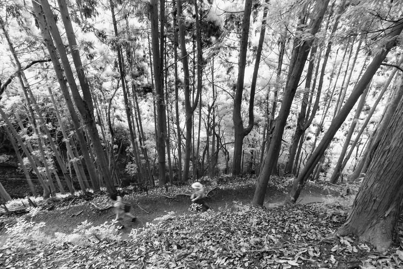 On our way up Monkey Mountain, Arashiyama.