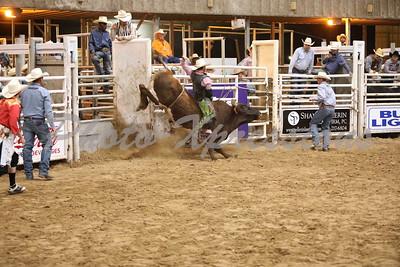 Bull Riding Tuesday   September 24, 2019
