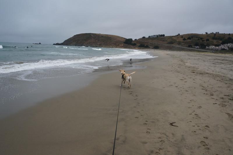 at the beach 2016 153.JPG