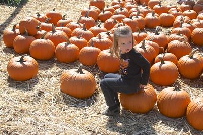 Pumpkin Farm - 2013 - Denai 3