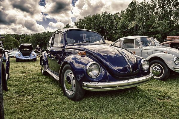 2013 VW Show