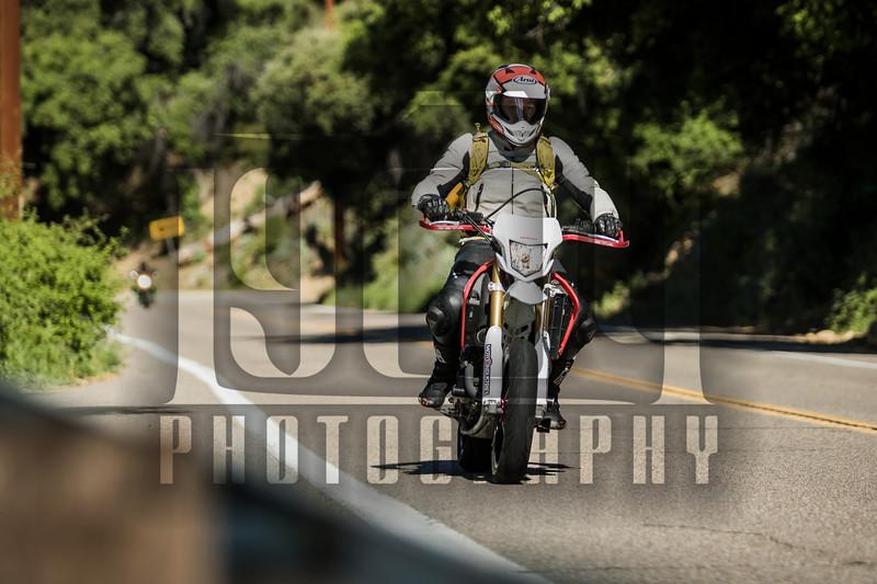 20170402 Palomar Mountain 0018.jpg