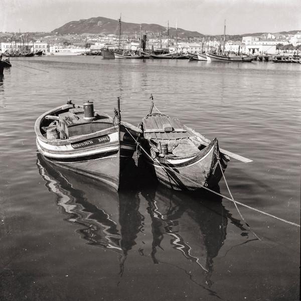 © Saúl José Correia