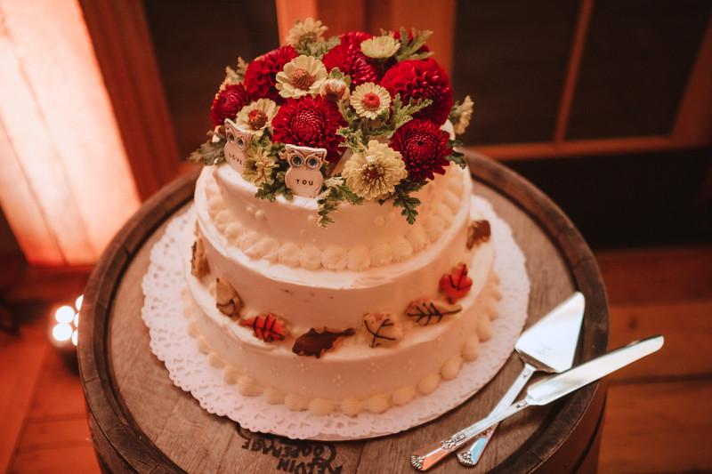 Valley View Farm Bohemian Boho Wedding Western Massachusetts Wedding Photographer 011.jpg