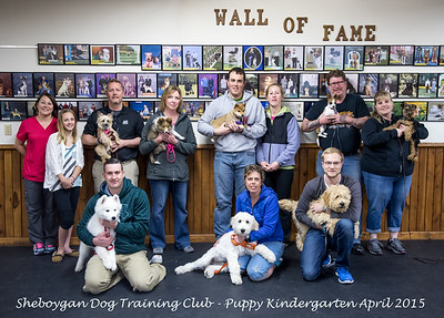 Puppy Kindergarten April 2015