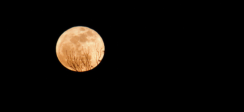 This is the first image of the moon I shot with my Canon 7D... But not the last.  :~)