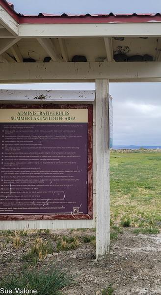 05-19-2021 Summer Lake Wildlife Refuge-5.jpg