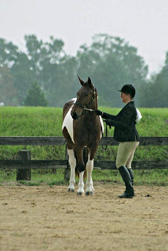 """Donna is doing a """"get me out of this downpour"""" rain dance!! Her horse did not seem to mind though!"""
